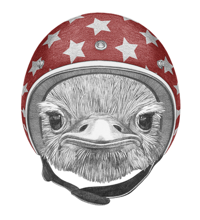 Portrait of Ostrich with helmet, hand-drawn illustration