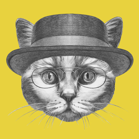 Portrait of a cat with a hat and glasses. Hand-drawn illustration.