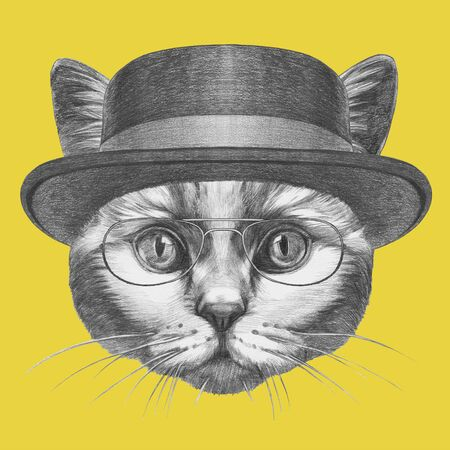 Portrait of Cat with hat and glasses. Hand-drawn illustration.