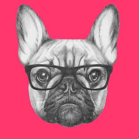 Retrato de Bulldog Francés con gafas. Ilustración dibujada a mano.