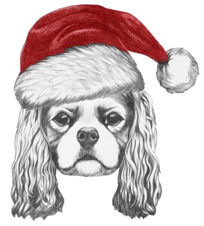 Portrait of Cavalier King Charles Spaniel with Santa Hat. Hand drawn illustration.