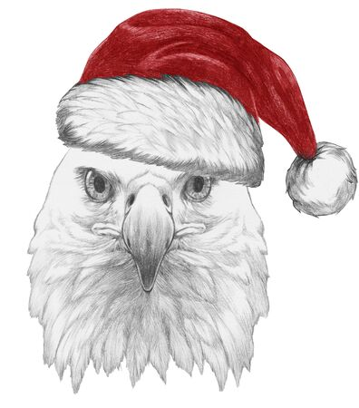 Portrait of Eagle with Santa hat,  hand-drawn illustration