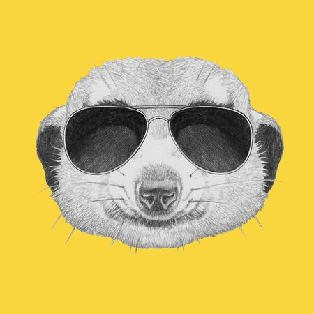 Portrait of Meerkat with sunglasses,  hand-drawn illustration