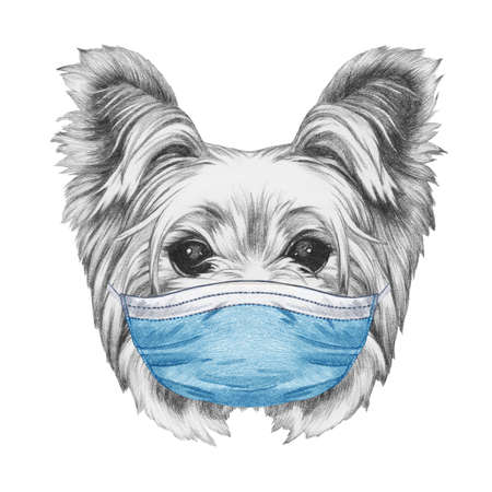 Portrait of Yorkshire Terrier with face mask. Hand-drawn illustration.