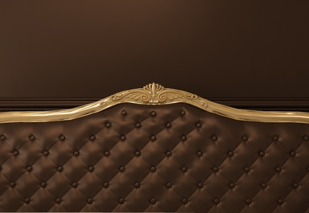 luxurious interior: Leather Textured back of sofa with golden frame
