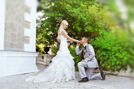 wedding, kneeling Groom Kissing the Hand of His Bride photo