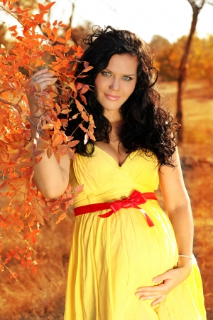 Young beautiful pregnant woman in autumn photo