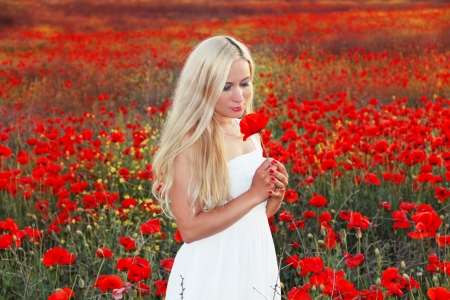 poppy field: Young beautiful woman with red flower in poppy field in summer