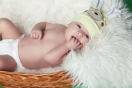 Resting newborn baby on fur in basket photo