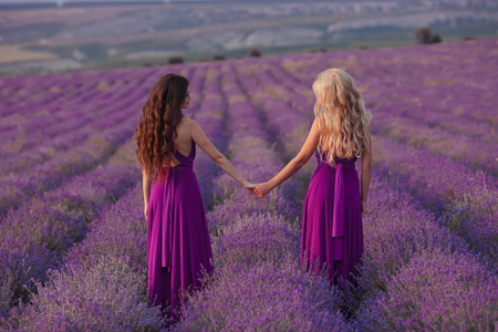 Carefree two women hold hands enjoying sunset in lavender field. Harmony. Back view of Attractive blond and brunette with long curly hair style in purple dress dreaming. Stockfoto