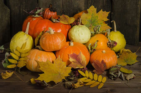 Autumn still life of pumpkins and autumn leaves on an old wooden background. Harvest Festival, Thanksgiving