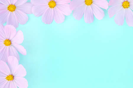 Greeting card background, delicate lilac flowers on a green and blue background with copy space with selective focus