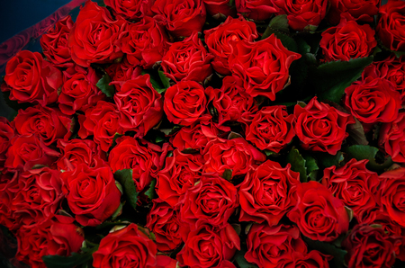 beautiful bouquet of red roses to your loved ones prazniki, birthday, valentines day, wedding