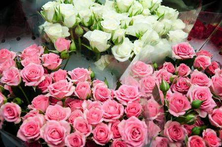 roses, pink, many, beautiful, praznik, birthday, valentines day, love, wedding, armful, tenderness, romance