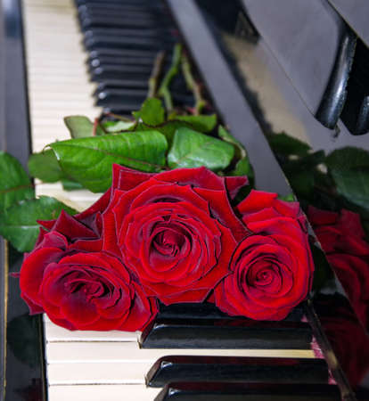 bouquet of red roses on piano keys, flowers close up