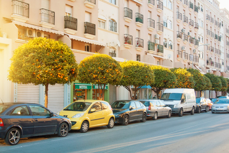 TORREMOLINOS, SPAIN - FEBRUARY 13, 2014: A typical road street with rows of cutted orange trees and parked cars on warm summer sunset light, toned film effect background.