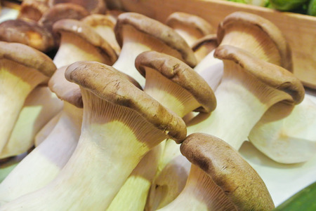 Close up of fresh mushrooms on display on stand  for sale on open street city market in Stuttgart, Germany. 免版税图像