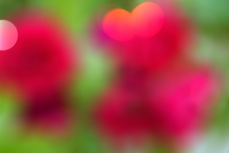 Bright pink violet red green abstract beautiful colorful bokeh blurred lights texture background. 免版税图像