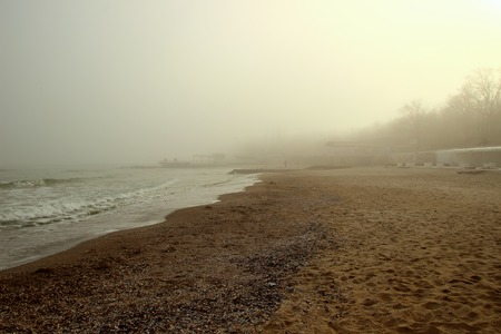 Seashore and fog settles on the ground