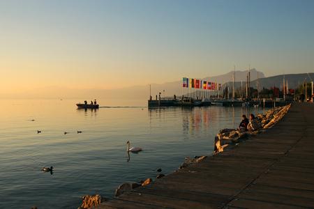 2 november: Bardolino, Italy, 2 November 2015, Swan floating along the shoreline of Lake Garda. Editorial