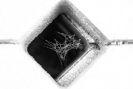 paver: black and white photo of little spider web covered with dew , inside concrete grid paver