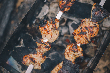 Close-up barbecue pork shashlik on the grill in nature