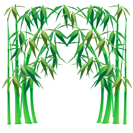 bamboo arch
