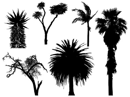 set of exotic trees Illustration