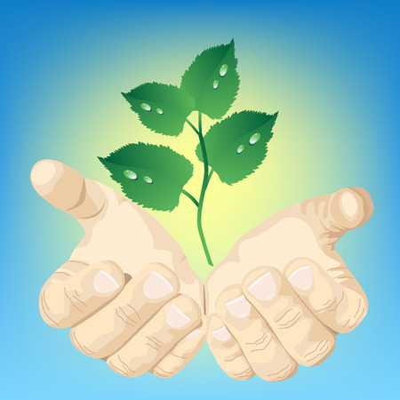 hands and green plant Illustration
