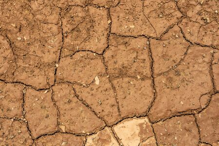 Cracked Dry Clay Ground Soil Background and Texture