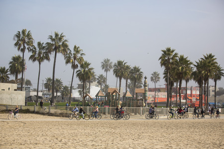 VENICE, UNITED STATES - January 3  Group of people riding bicycles by the beach promenade on January 3, 2014 in Venice Beach, Los Angeles