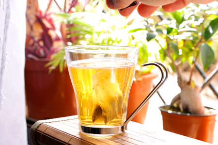 Putting red tea bag into mug with hot water on window with plants Stock fotó