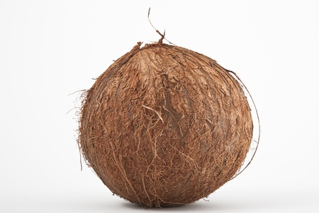 front view of coconut isolated on white background