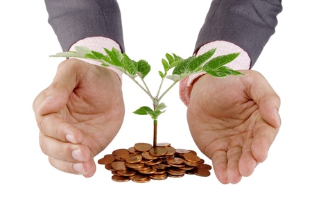 Businessman protecting plant sprouting from a pile of coins - good investment and money concept Stock Photo - 9965534