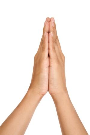 personas orando: Mujer rezando manos aisladas sobre fondo blanco