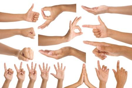 alzando la mano: gestos de mano de mujer aisladas sobre fondo blanco  Foto de archivo