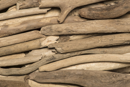 driftwood: background of old polished wood sea, closeup