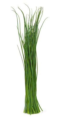 bunch up: Fresh Herbs, Bunch of chives On White Background