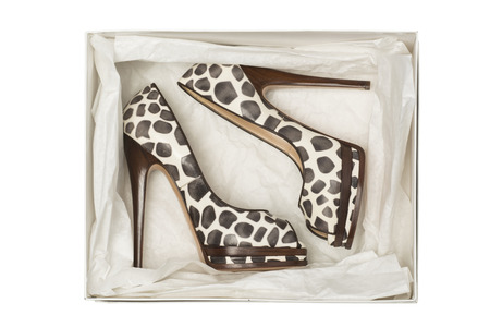 animal foot: animal print high heel shoes in box isolated on white background