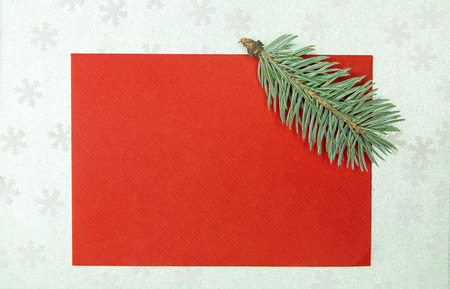 chritmas: chritmas card with fir on silver snowflakes background Stock Photo