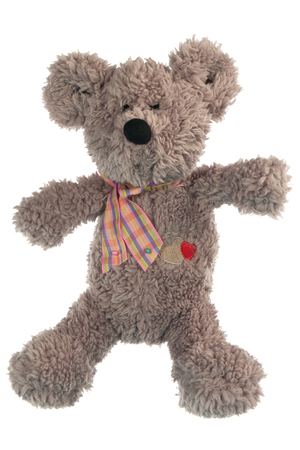 toy bear: Teddy Bear toy isolated on white, Pattern Fabric