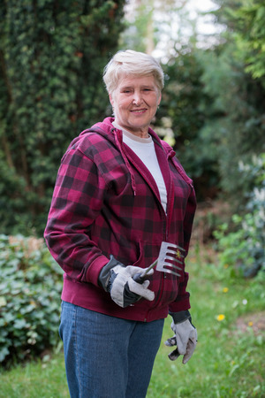 woman gardening: senior woman gardening, using Rake