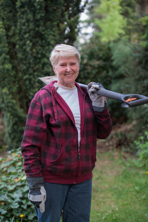 woman gardening: senior woman gardening, using spade