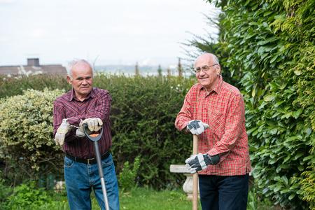 spades: two senior gardener with spades standing in garden