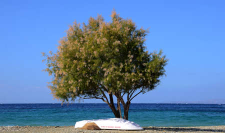 beach of the cyclades islands of Greece on the shores of the Aegean Sea