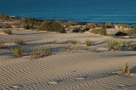 Corralejo dunes in the Corralejo Natural Park.