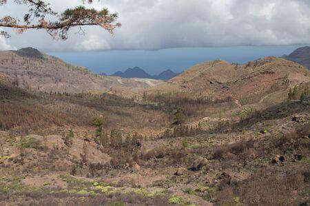 The Inagua ravine in The Nublo Rural Park.