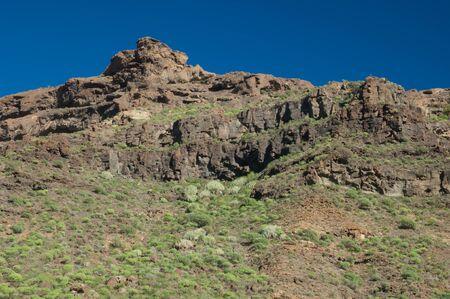 Cliff in the Arguineguin ravine. Gran Canaria. Canary Islands. Spain.