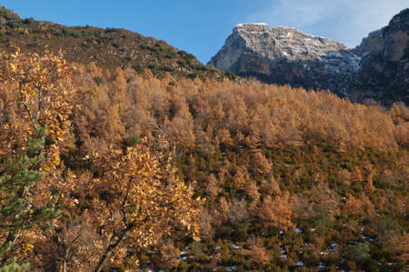 The Vio valley and The Sestrales in the Pyrenees.