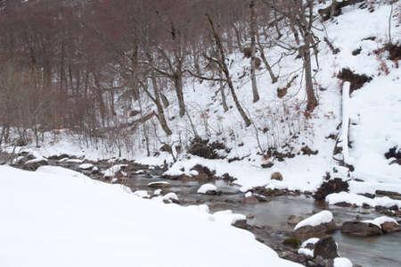 Arazas River in the Ordesa Valley in winter.